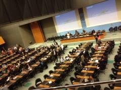 Subcomitet pe SPS, WTO